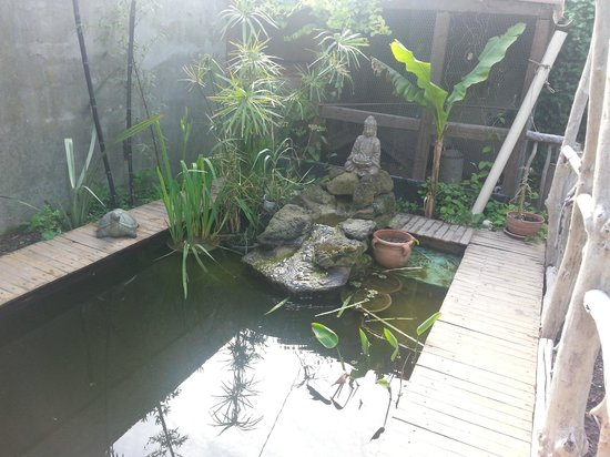 L'ilot Bambou: Garden detail