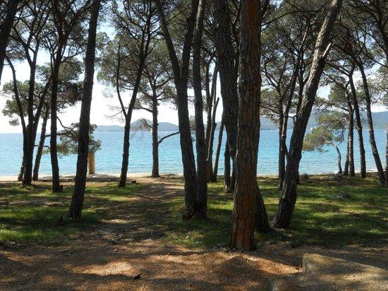 Hotel Adria: plage de biograd
