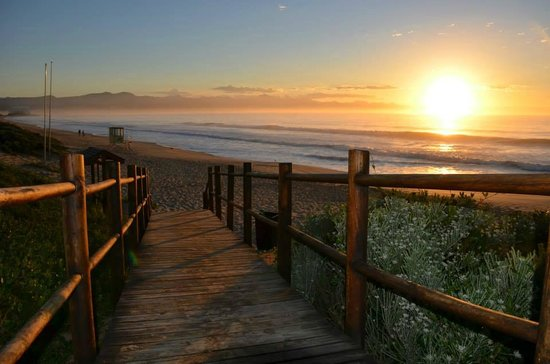 Gecko Transport and Tours - Day Tours: Plettenberg Bay