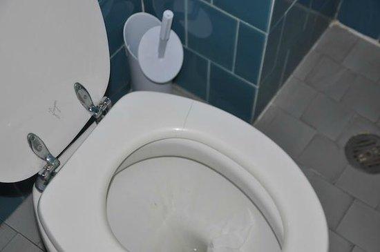 Royal Victoria Hotel : Asse wc crepato