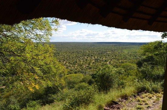 Olifants Rest Camp : Vue sur la vallée depuis le bungalow FQ4V2