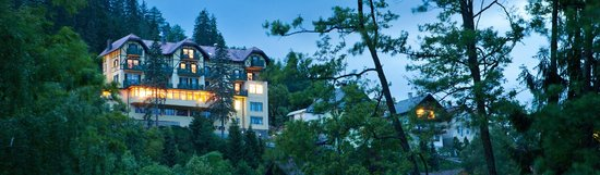 Hotel Triglav Bled: Wiev from the lake