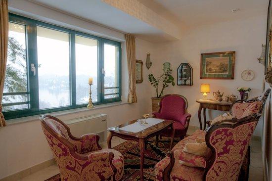 Hotel Triglav Bled: Wine club
