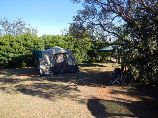 Mountain Sanctuary Park: Campsite