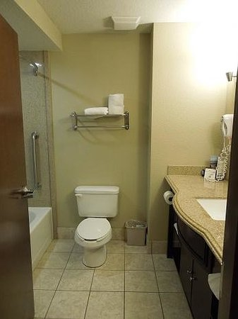 Holiday Inn Express Crystal River: Bathroom