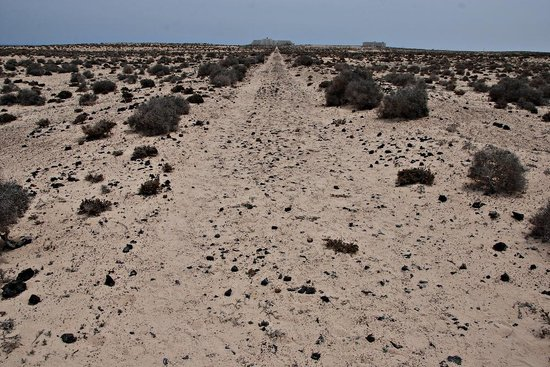 Parque Natural de Corralejo: Be prepared - it's a long walk through the sand dunes