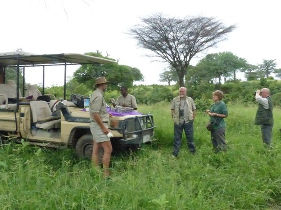Kwihala Camp, Asilia Africa: this is what the green season is like