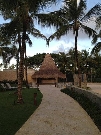 Barcelo Bavaro Beach - Adults Only : территория отеля