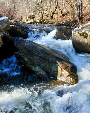 Little River Canyon National Preserve: Johnnie's Creek on Canyon Mouth Trail