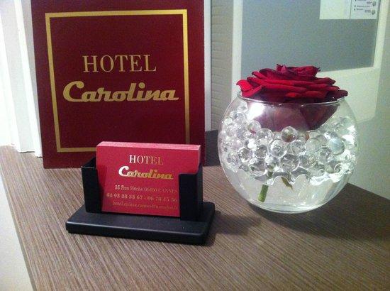 Hotel Carolina : Carolina