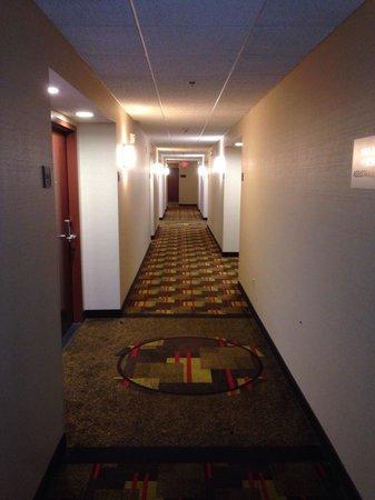 Drury Inn & Suites Orlando: Corridor