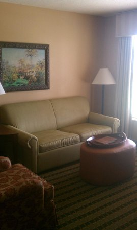 Homewood Suites Pensacola-Arpt (Cordova Mall Area): Living room (pull out couch)