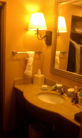 Homewood Suites Pensacola-Arpt (Cordova Mall Area): Bathroom in master bedroom