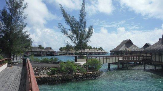 InterContinental Moorea Resort & Spa: Huts on the water