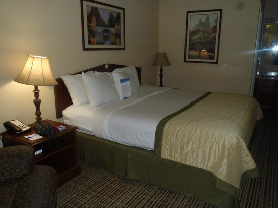 Baymont Inn & Suites Valdosta at Valdosta Mall : Very Comfy, King Sized Bed!!!