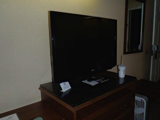 Baymont Inn & Suites Valdosta at Valdosta Mall: TV inside our room....