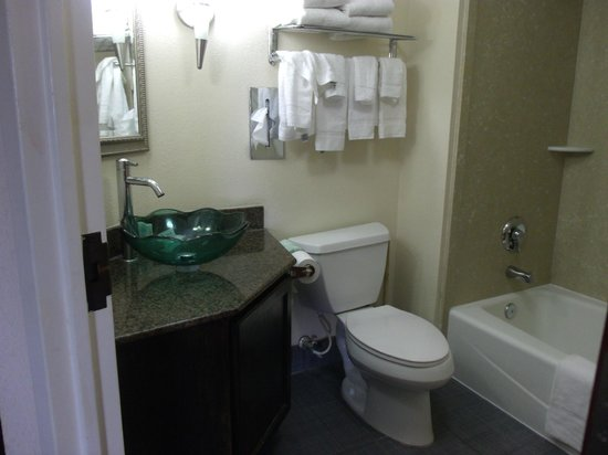 """Comfort Inn Downtown Charleston: This is NOT a sink.  It is a """"Vessel""""  :-)"""