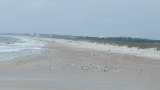 Fort Clinch State Park : View of the beach