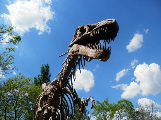 Faunia: El cañon de los dinosaurios