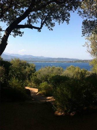 Residence U Paviddonu : vue de la villa