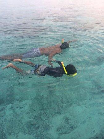 Shangri-La's Villingili Resort and Spa Maldives: Daily snorkeling :)
