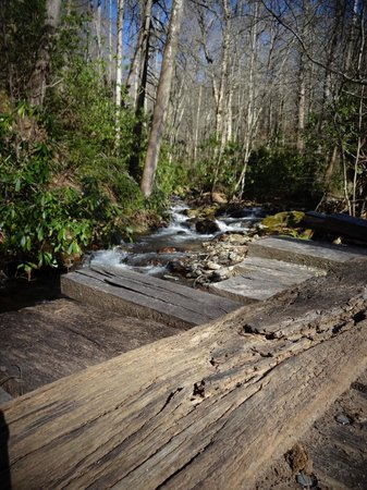 Mountain Light Sanctuary: Creek view from the bridge