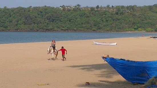 Agonda Beach: running with the horse on the yellow sand