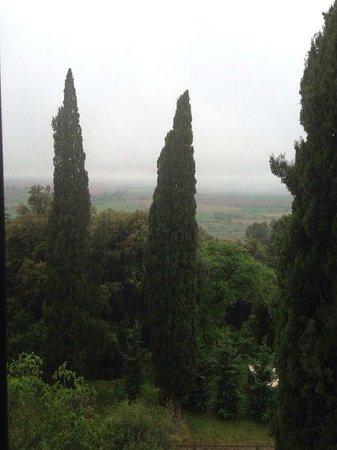 Villa Schiatti: Вид из номера