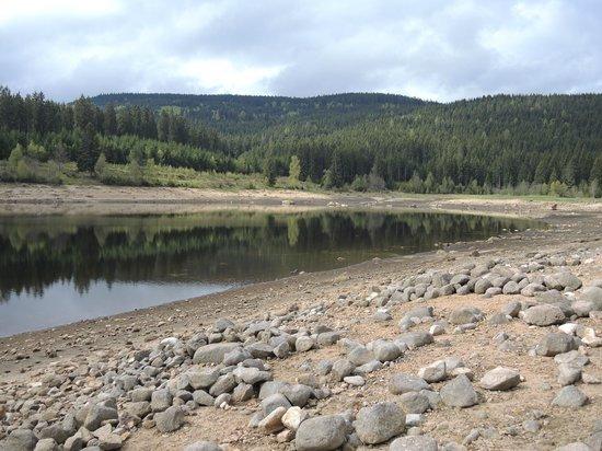 Lake Schluchsee: Die Nordwest Ecke des Sees mit freigelegten Steinen