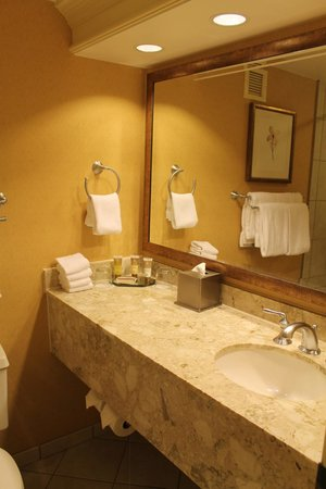 Gaylord Opryland Resort & Convention Center : The bath room
