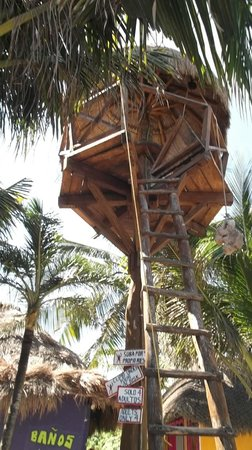La Buena Vida Restaurant: One of the tree houses