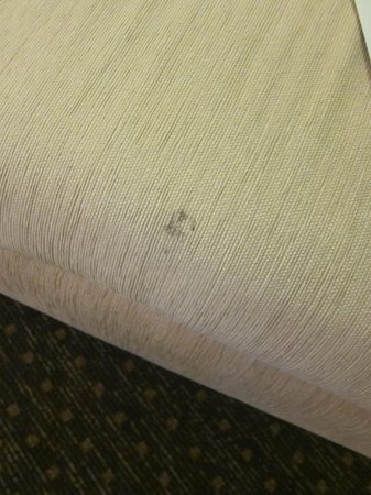Cinnamon Lakeside Colombo: Stained and dirty chair