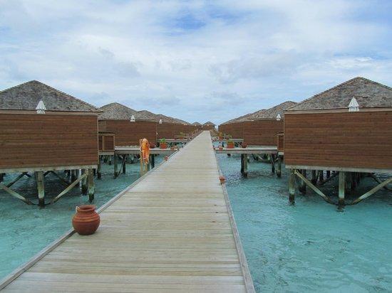 Vilamendhoo Island Resort & Spa : camere water