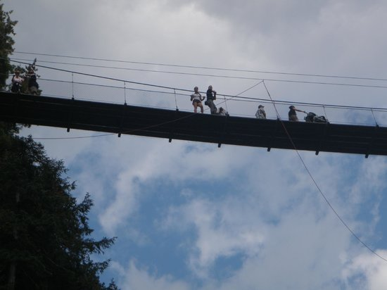 Quebec Experience : Suspended Bridge