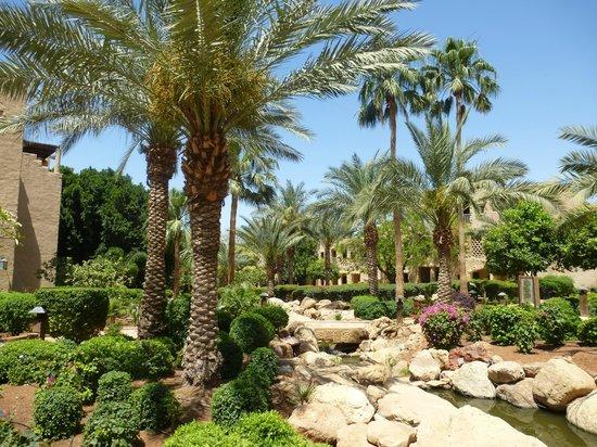 Movenpick Resort & Spa Dead Sea: magnifique jardin