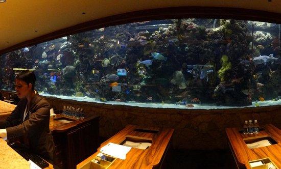 The Mirage Hotel & Casino: Amazing aquarium
