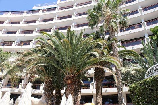 Seaside Sandy Beach : hotel from gardens