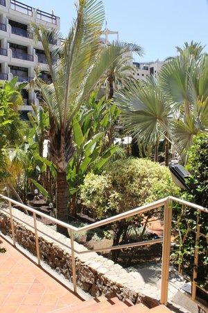 Seaside Sandy Beach : gardens well kept