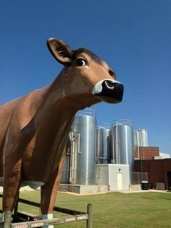 Mayfield Dairy Braselton Ga Tours
