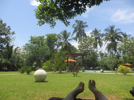 Paradise at Buckingham Place