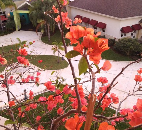 Secrets Wild Orchid Montego Bay : View overlooking the restaurant area