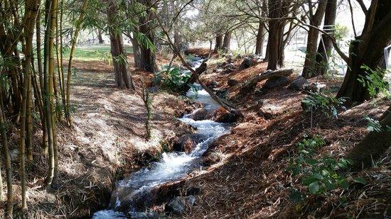 Centro Vacacional Imss Oaxtepec: A small river in the camping area