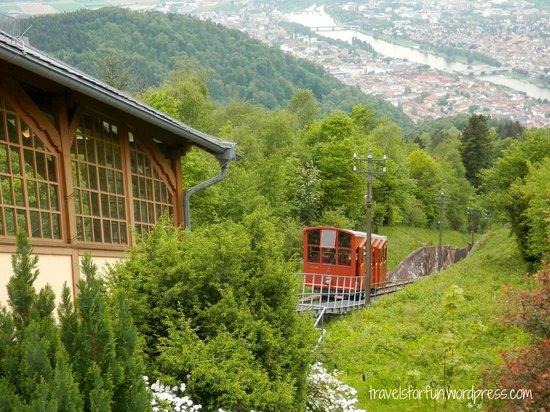 Konigstuhl Funicular (Bergbahn)