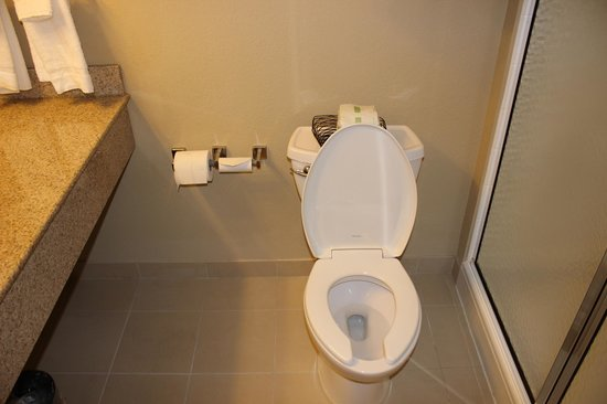 Country Inn & Suites By Carlson, State College (Penn State Area): Nice Clean Toilet