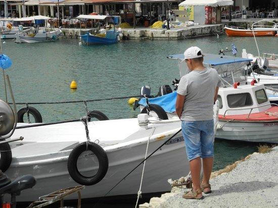 Venetian Harbour: Fiskare
