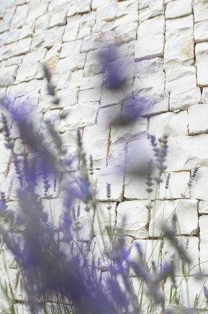 Hotel Löwenhof: Lavendel