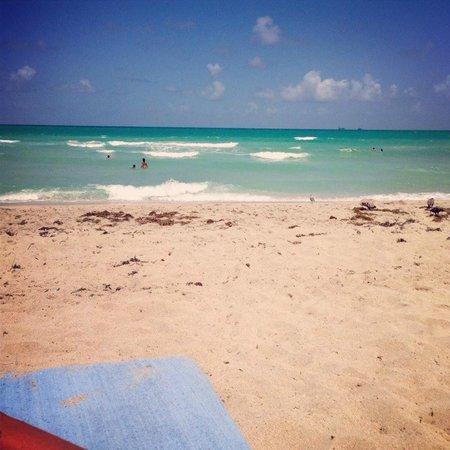 Holiday Inn Miami Beach : the beach