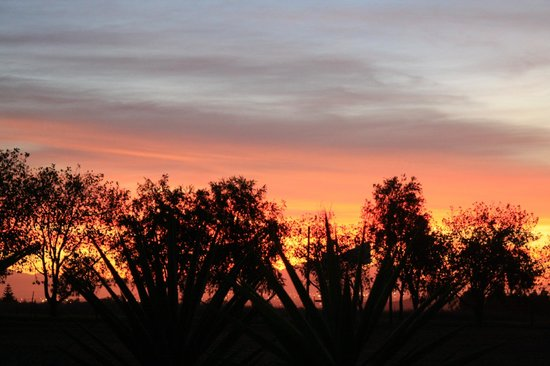 4 Heaven Guesthouse: Blick aus dem Garten -Sonnenuntergang über Kapstadt