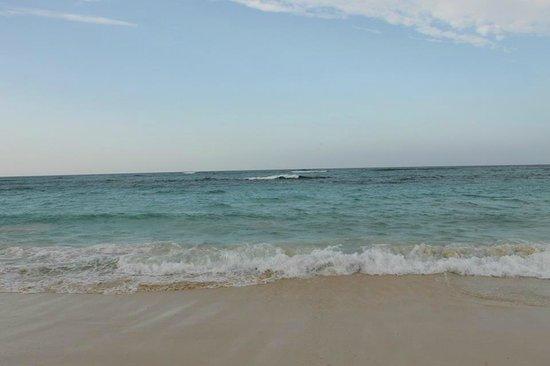 Hotel Riu Palace Bavaro: beach