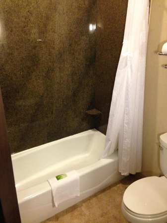 Holiday Inn Express Hotel & Suites Houston NW-Beltway 8-West Road: Bathroom